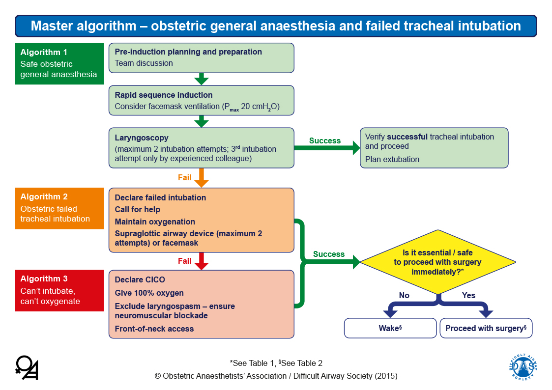 Obstetric Airway Guidelines - Master Algorithm
