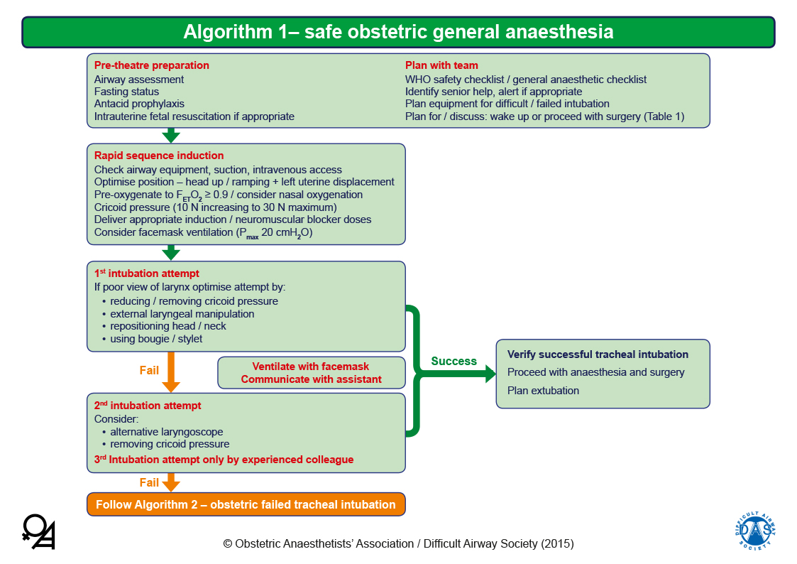 Obstetric Airway Guidelines - Algorithm 1