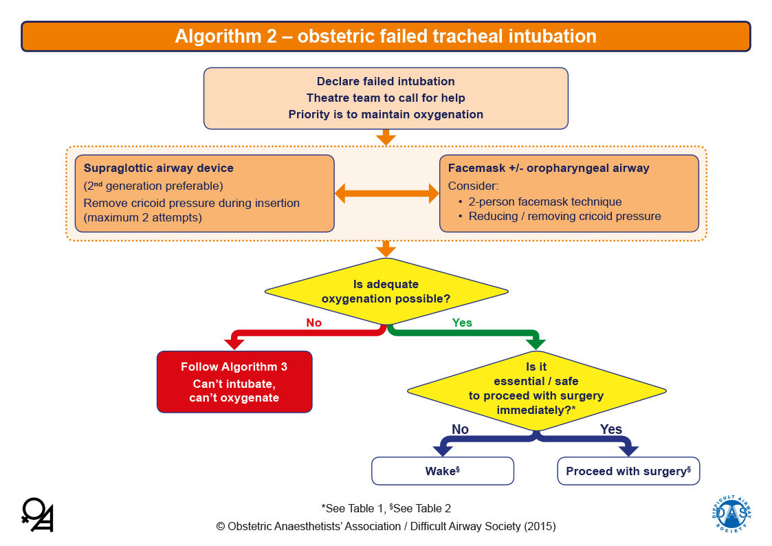 Obstetric Airway Guidelines - Algorithm 2
