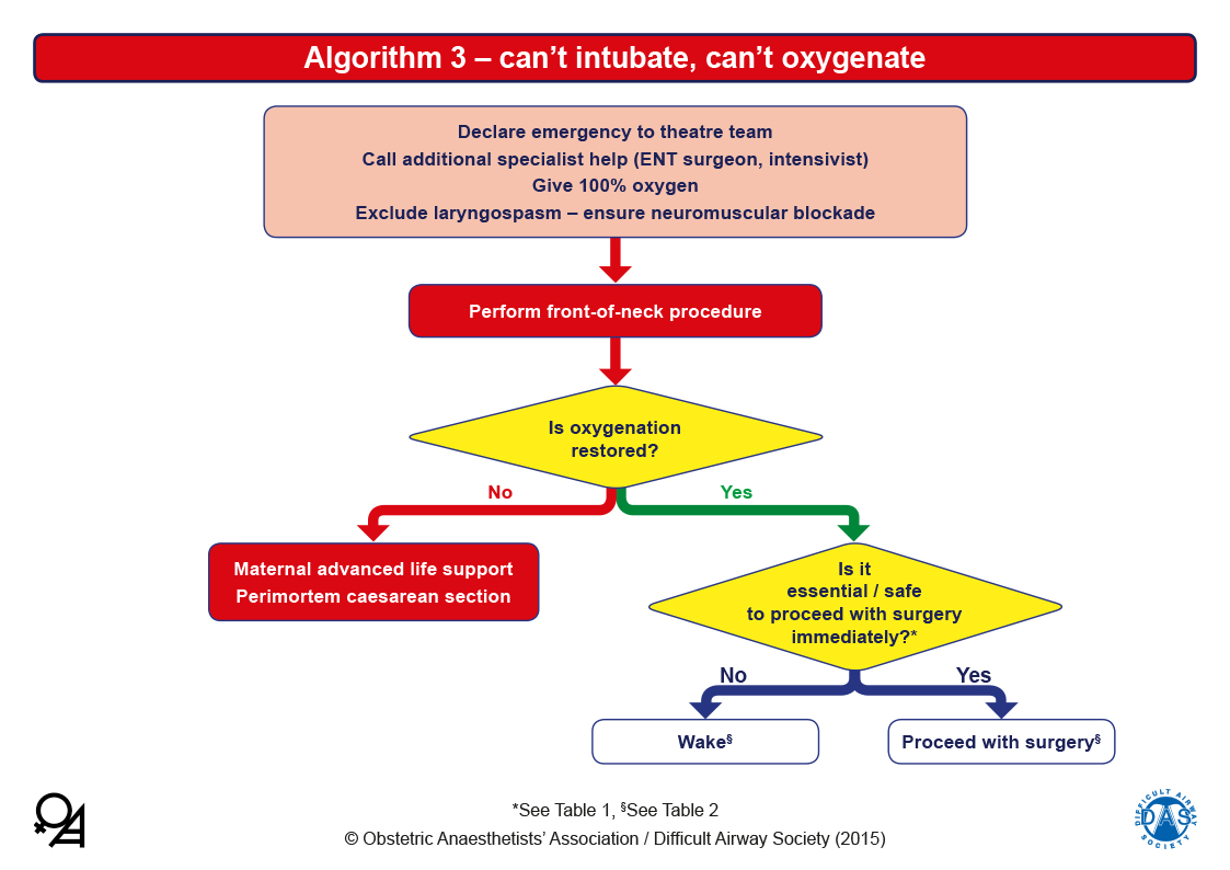 Obstetric Airway Guidelines - Algorithm 3